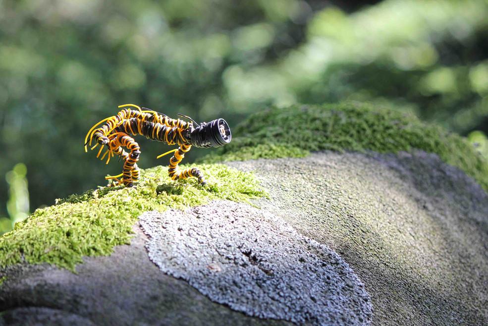 Sculpture creature recup dans la nature