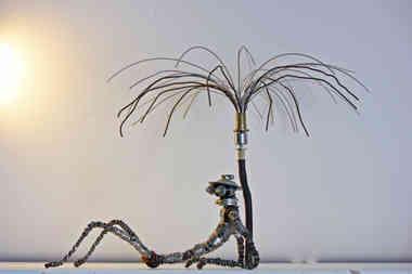 Sous le soleil: robot en récup se prélassant sous le soleil