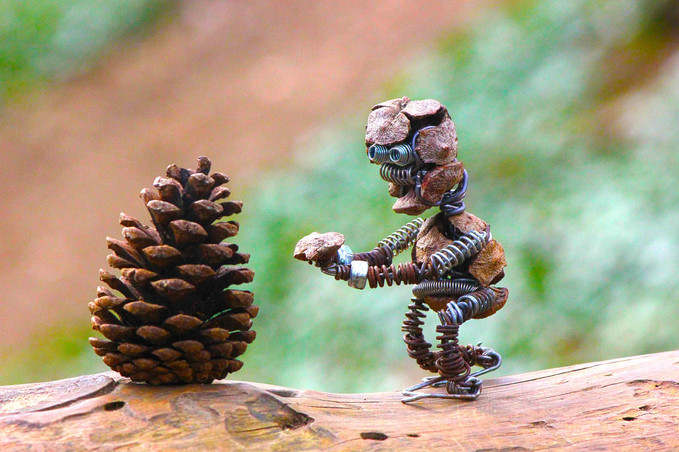 Robot amoureux d'une pomme de pin