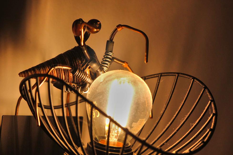 crustacé en recyclage sur une lampe