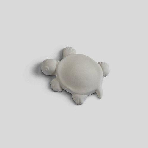 Turtle Bisquie