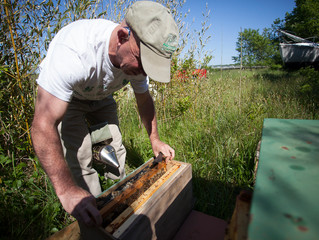 The Science of Beekeeping
