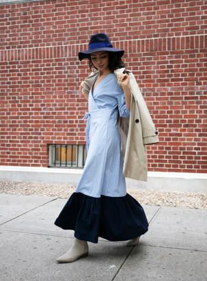 Samantha Pin Stripe Poplin Dress