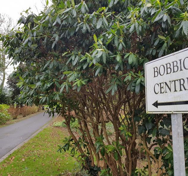 1 Bobbio Centre