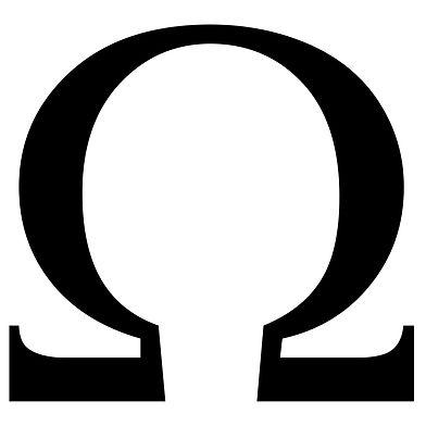 Big Short Fund logo