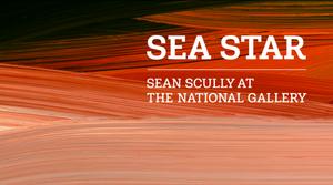 תערוכה חדשה של שון סקאלי בלונדון