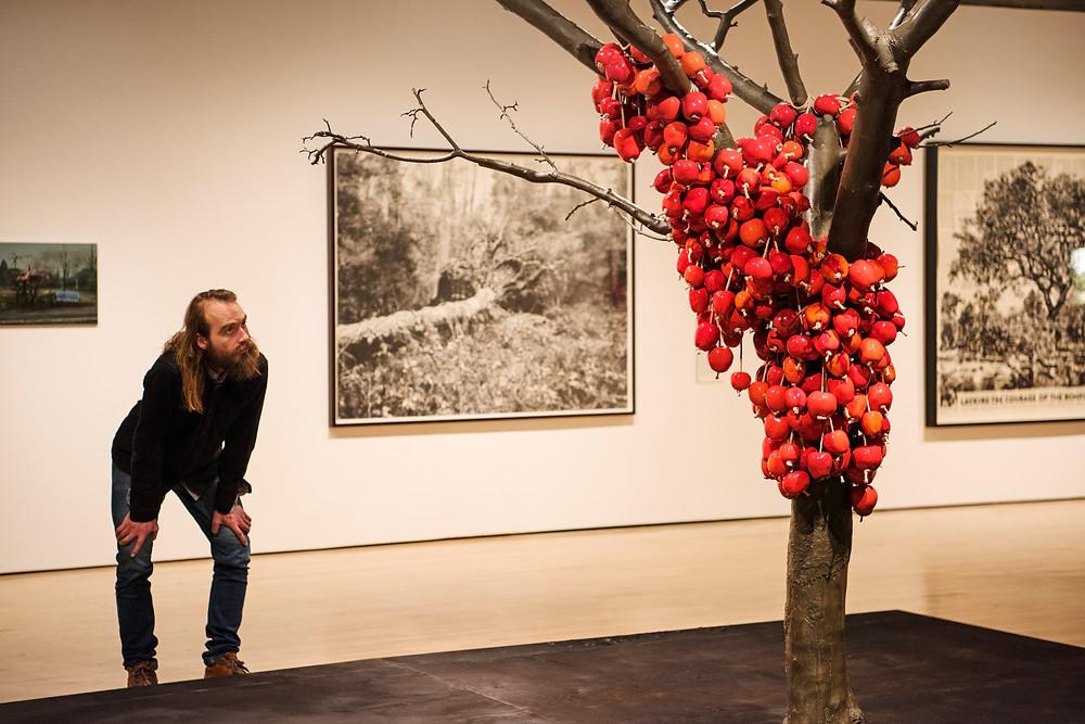 תערוכת אמנות על עצים בלונדון
