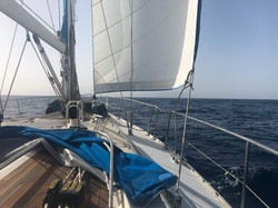 Julia Sailing