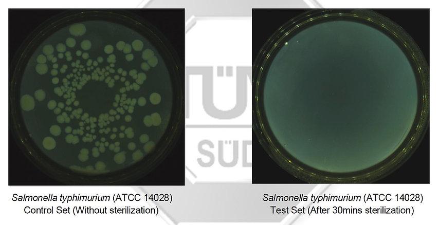 Salmonella Typhimurium - TUV SUD.jpg