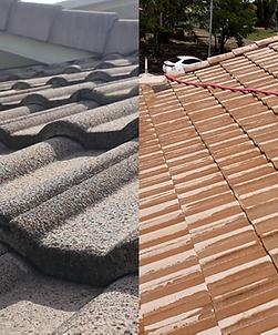 Roof Wash Eucalyptus Dv.png