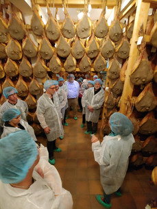 Prosciutto tour and tasting, Rosa Dell Angelo, Parma