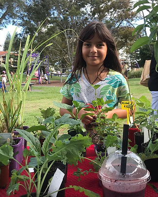 Tweed Farmers Market | Kids Playground