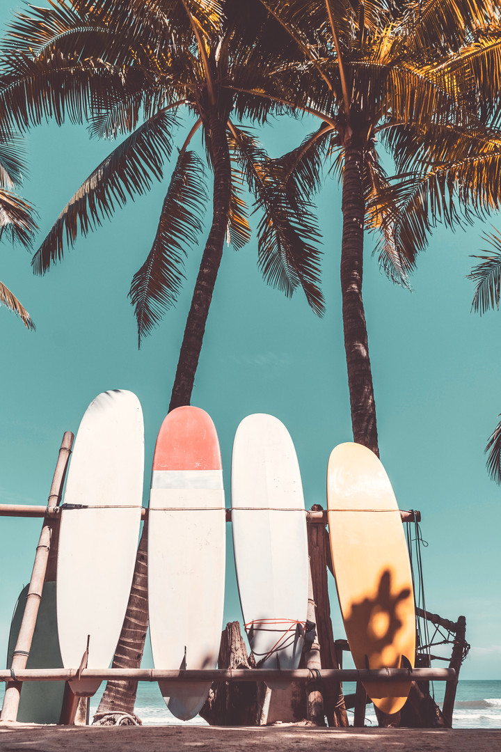 Surfboard and palm tree with blue sky on