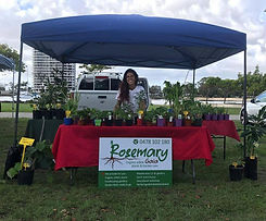 Rosemary Gaia Tweed Farmers Market Stallholder
