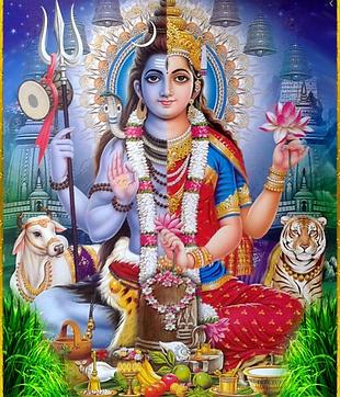 6 Parvati 1.png