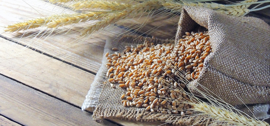Wearible Wheatbags New Zealand How To Care For Your Wheat Bag