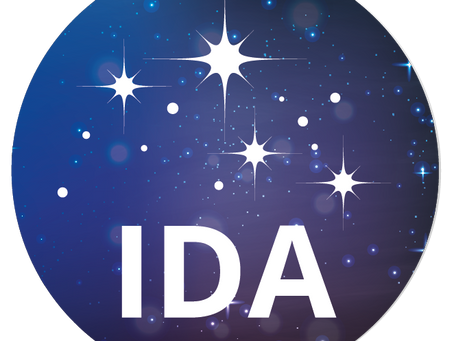 The International Dark Sky Association - Survey
