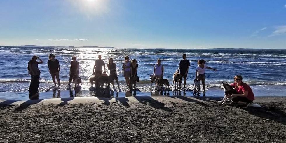 Balade-baignade à la plage du Jaï