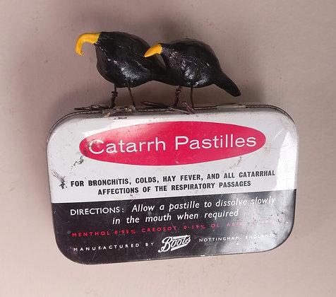 Bird Tin    The Catarrh Sister's.