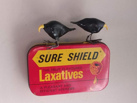 Bird Tin   Ava and Liv.
