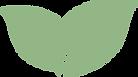 Leaf Separator.png
