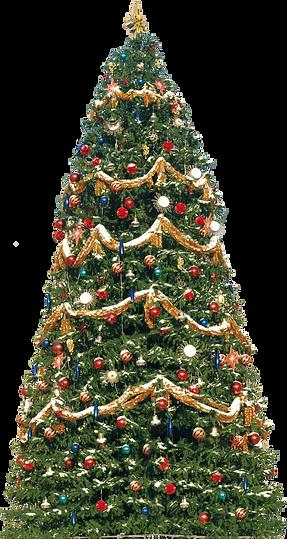 christmas_tree_PNG130_edited.png