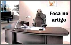 fotoFoca