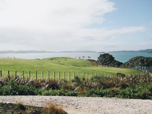 TRAVEL GUIDE: NEW ZEALAND MATAKANA WINE REGION