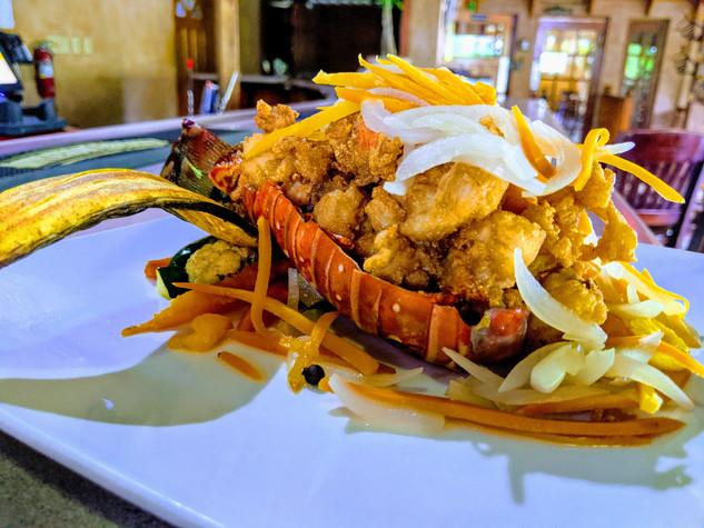 Escovitch Lobster