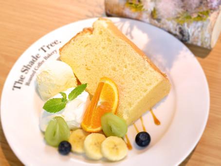 1st Anniversary !【オープン1周年記念 企画①】🎉