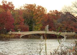 Bow Bridge in Autumn, Central Park, NYC