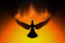 funeral bird.jpg