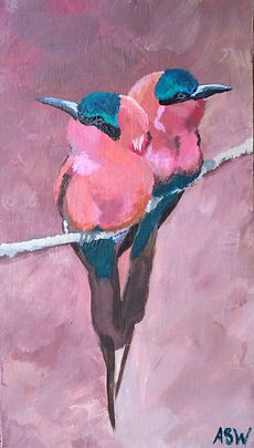 two pink birds on a branch