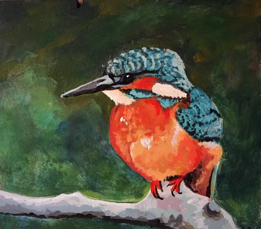 Kingfisher 2015