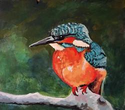 Kingfisher 2015