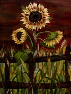 Sunflowers #1