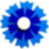 Bleuet.jpg