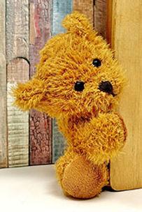 teddy-3405770_1920-2.jpg