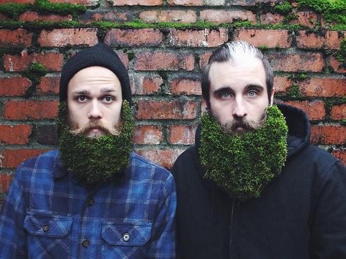 """""""Moss Beards"""""""