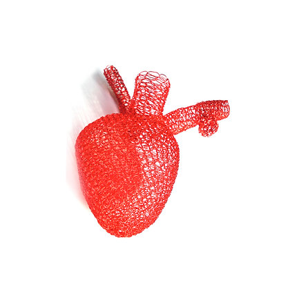 Brooch Heart, Human Physiology Collection