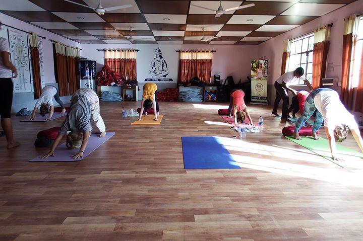 Adho Mukha Svanasana (Downward Facing Do