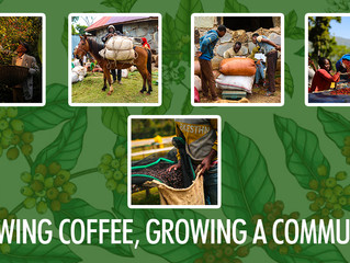 GROWING COFFEE, GROWING A COMMUNITY