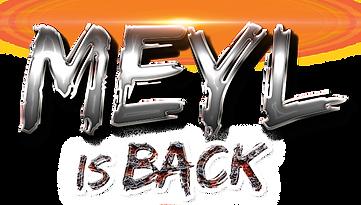 MEYL header - 3.png