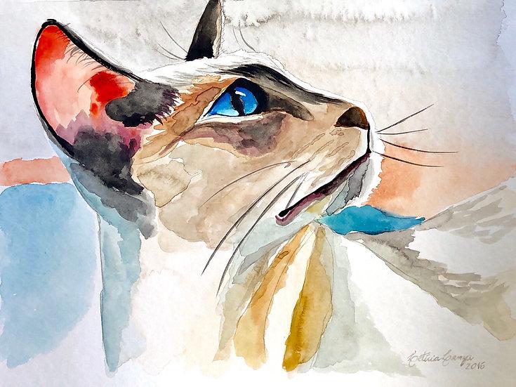 """Print """"Gato"""""""