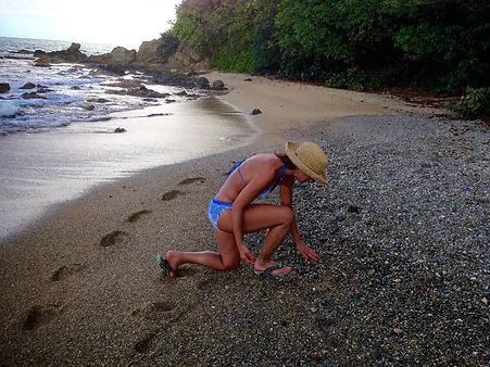 Sandpiper Sea Glass Jewelry
