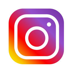 Image result for Instagram logo small