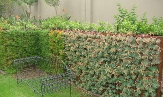 Gabion Green Wall