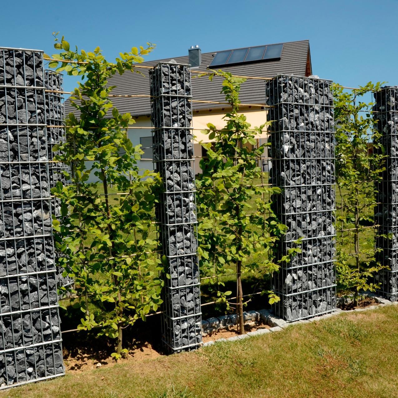 Gabion Living Wall