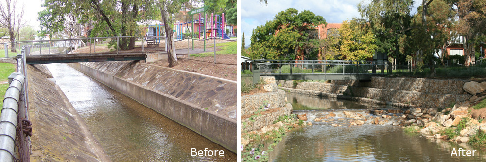 Dunstone Grove Creek Restoration Project