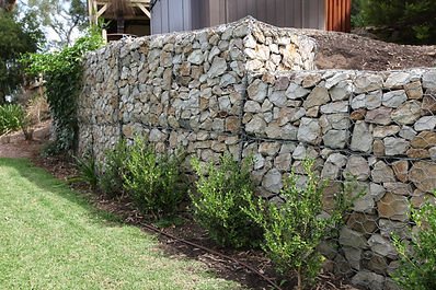 Gabion retaining walls in garden setting in Corromandel Valley, South Australia